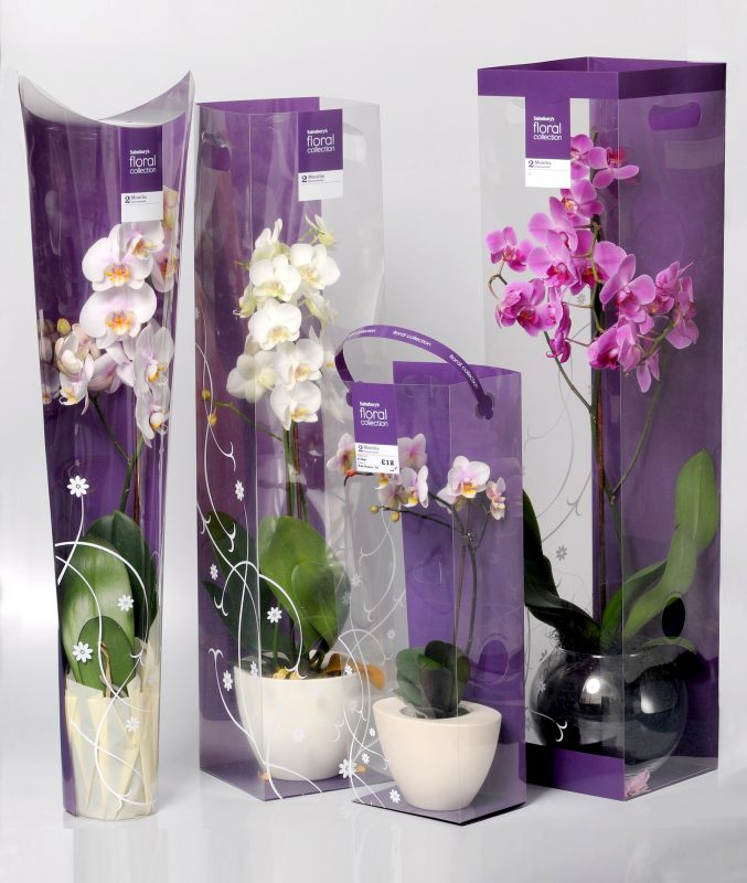 acetate boxes for orchids. Concave, with cut out handles, small with ribbon handles and large