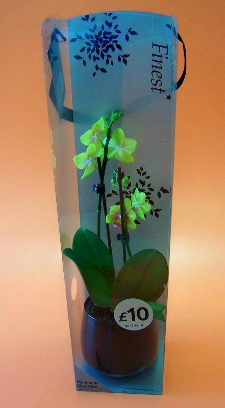 printed plastic packaging for yellow orchid