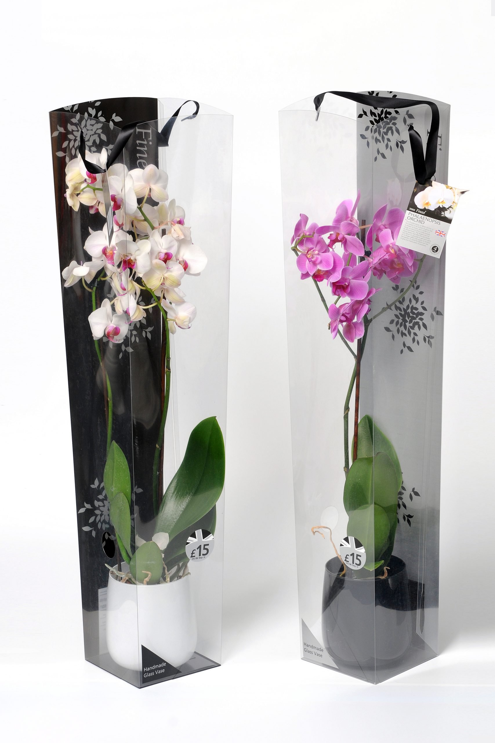 custom plastic packaging for flowers